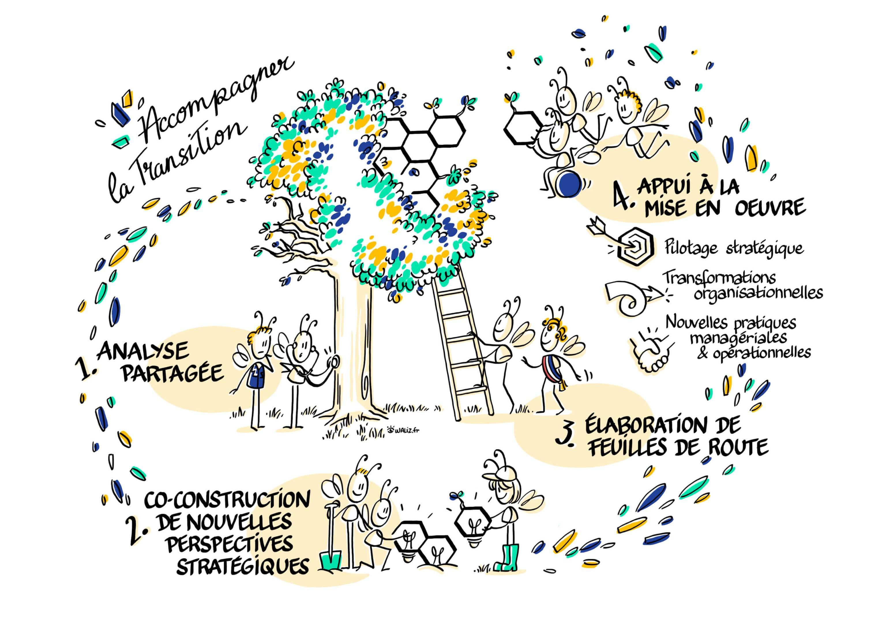 Accompagner la transition_STEER TRANSITION_Analyse partagée_nouvelles perspectives_Lyon_Quimper_Paris